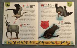 Endangered Animals Dictionary (17).jpeg