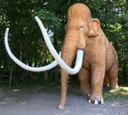 Mammoth-boraszoo