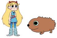 Star meets European Hedgehog
