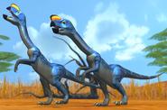 Oviraptor dbwc