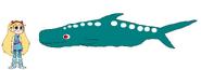 Star meets Whale Shark