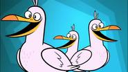 TTG Seagulls