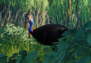 Southern-cassowary-planet-zoo