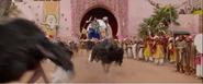Aladdin 2019 Ostriches