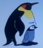Batw-animal encyclopedia-emperor-penguin