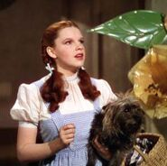 P-the-wizard-of-oz-judy-garland