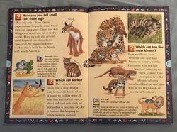 Wild Cats and Other Dangerous Predators (7).jpeg