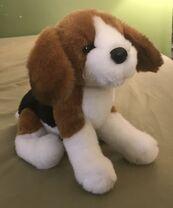 Balthezar the Beagle