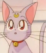 Diana in Sailor Moon Super S the Movie