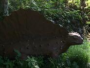 Dimetrodon-boraszoo