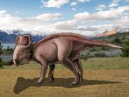 Dm udanoceratops