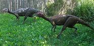 Driozaur (Dryosaurus) Baltow (2)