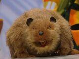Morton the Beaver