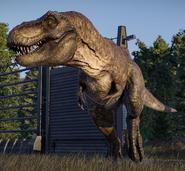 Tyrannosaurus rex (Jurassic World Evolution 2)
