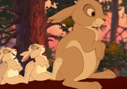 Brother Bear Hares