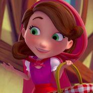 Disney Red Basket