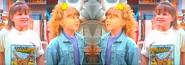 Dj and stephanie's twins
