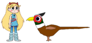 Star meets Ring-Necked Pheasant