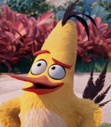 Chuck in The Angry Birds Movie-0