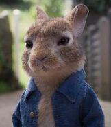 Peter-rabbit-peter-rabbit-2-34.5