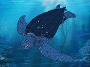Rileys Adventures Leatherback Sea Turtle