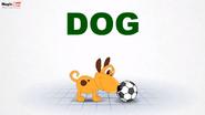 MagicBox Dog