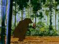 Magic Flute Bear