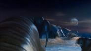 Pandavision walrus