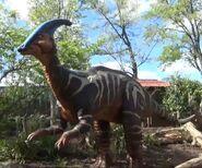 Saint Louis Zoo Parasaurolophus