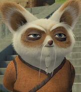 Shifu in Kung Fu Panda- Secrets of the Furious Five