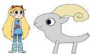 Star meets Dall Sheep