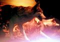 Toledo Zoo Grey Wolves