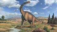 Brachiosaurus (Animals)