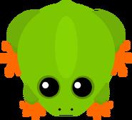 Mopeio Frog