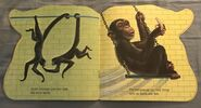 The Zoo Book (6)