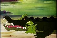 Dd-1953-05-30-alligator