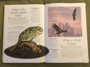 Endangered Animals (Over 100 Questions and Answers to Things You Want to Know) (14)