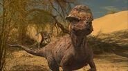 Paleo-world