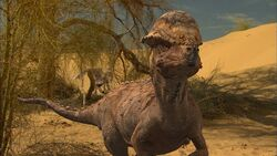 Paleo-world.jpg