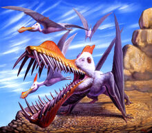 Rey caulkicephalus.jpg