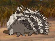 Rileys Adventures African Crested Porcupine