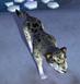Snow Leopard IC