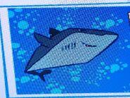Stanley Southern Sleeper Shark
