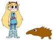 Star meets Short-Beaked Echidna