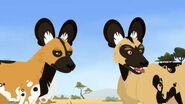 Wild Kratts African Wild Dog
