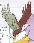 ANFLS Eagle