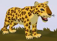 Leopard WOZ