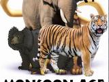 Monsoon Age Series