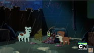 PPG Dogs