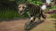 Planet Zoo Clouded Leopard